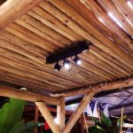toit bambou retouché